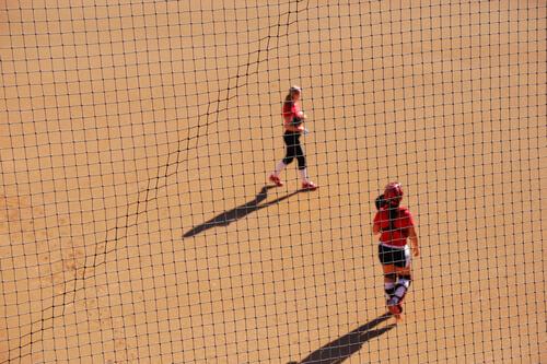 Softball Netting
