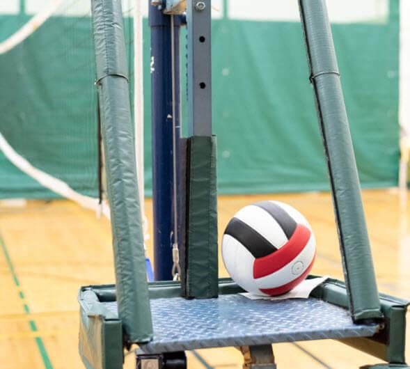 Volleyball Standards