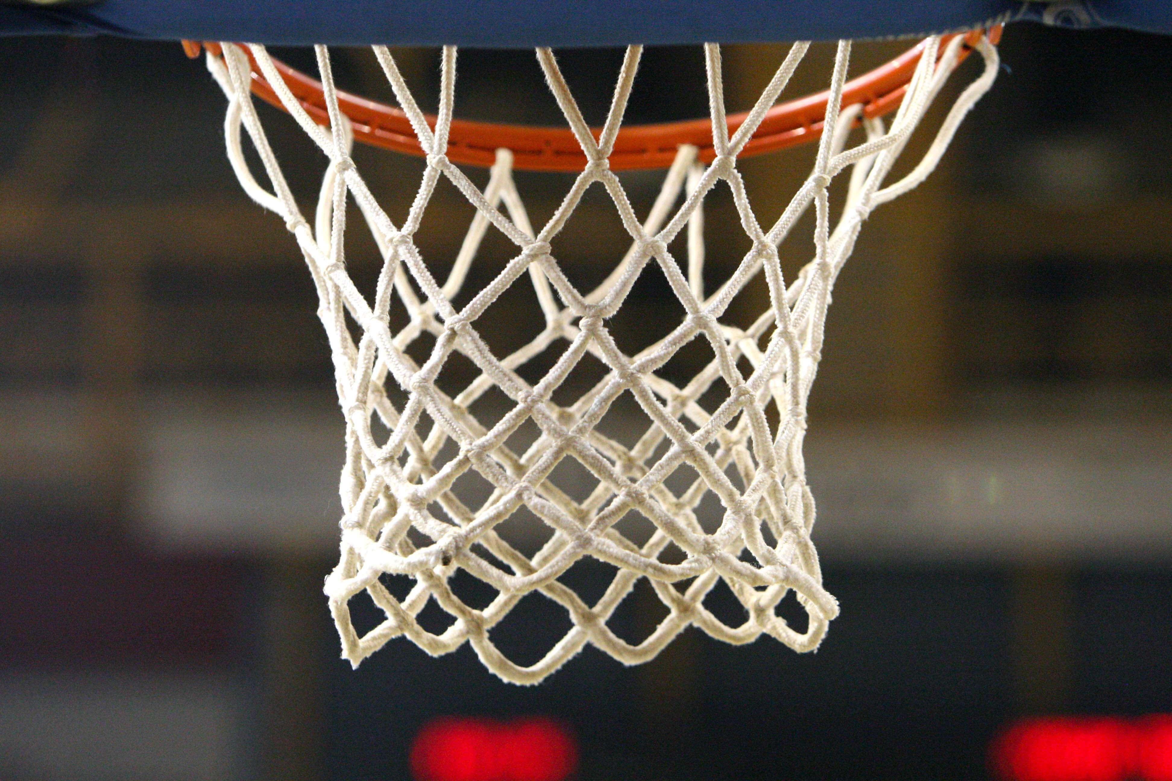 Basketball Goal Netting